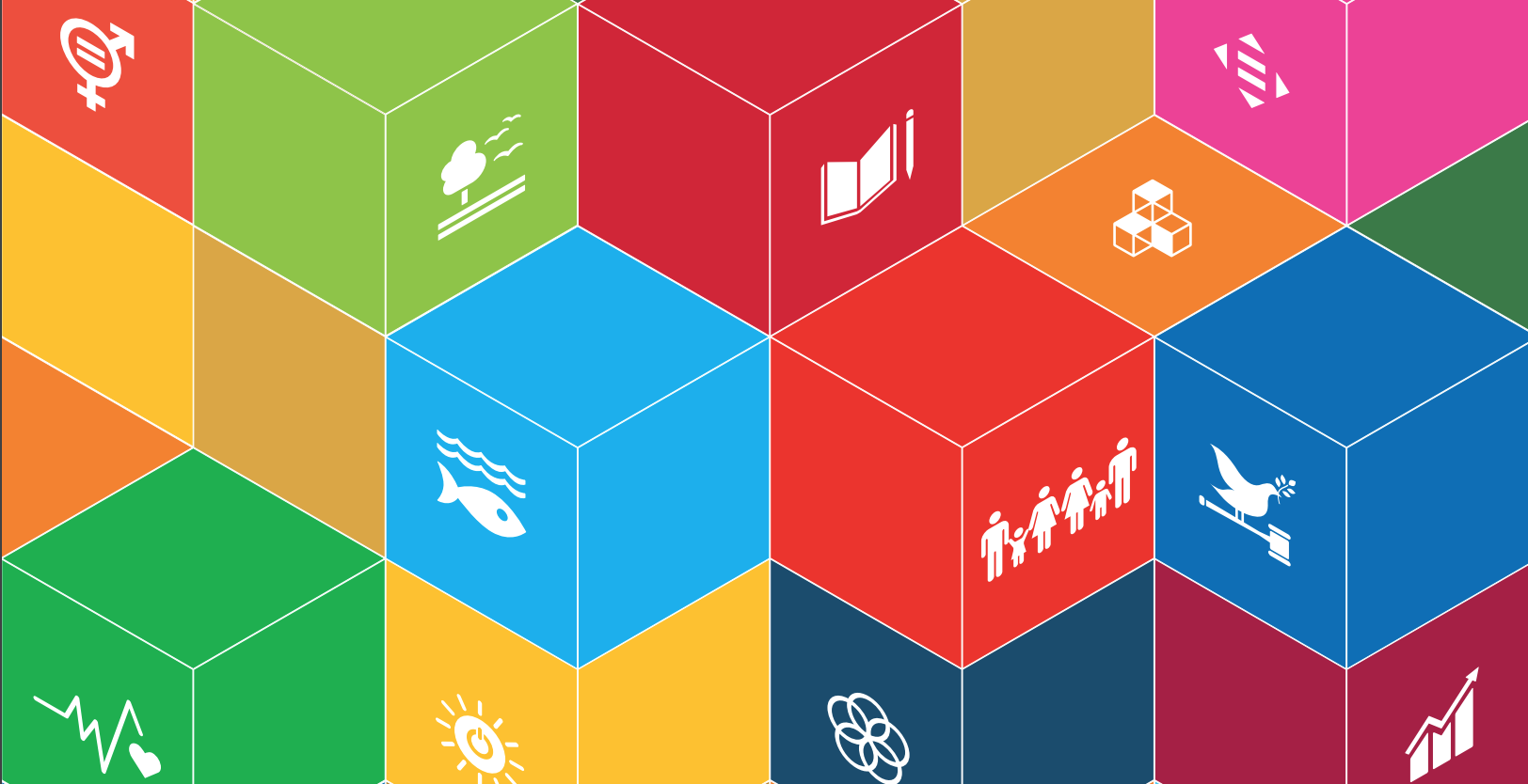 The SDG wheel with all 17 SDG colours represented